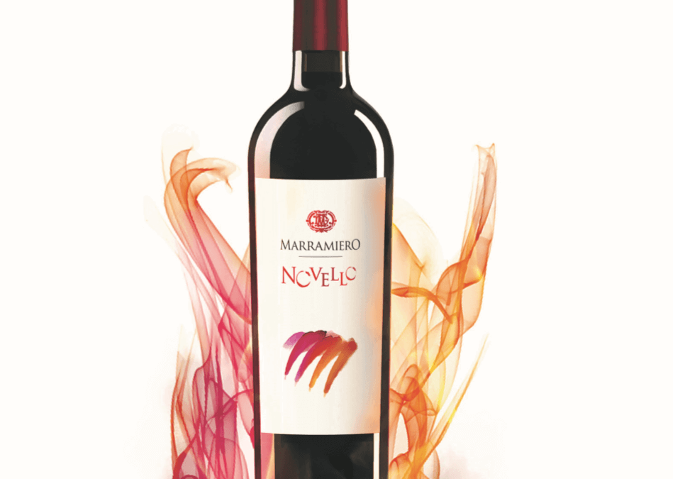 Novello – San Martino ogni mosto diventa vino…